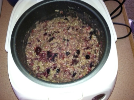 Cozy Oats with mixed berries